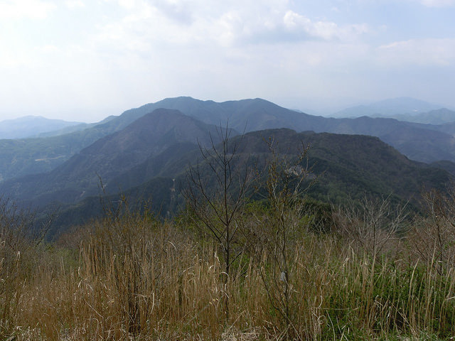 冠着山 山頂景色.jpg