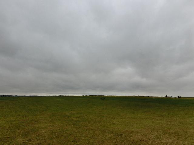 イギリス 草原